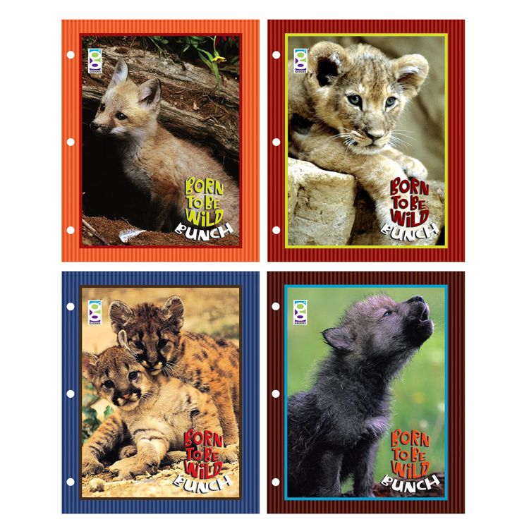 Picture of Born To Be Wild Bunch Folders