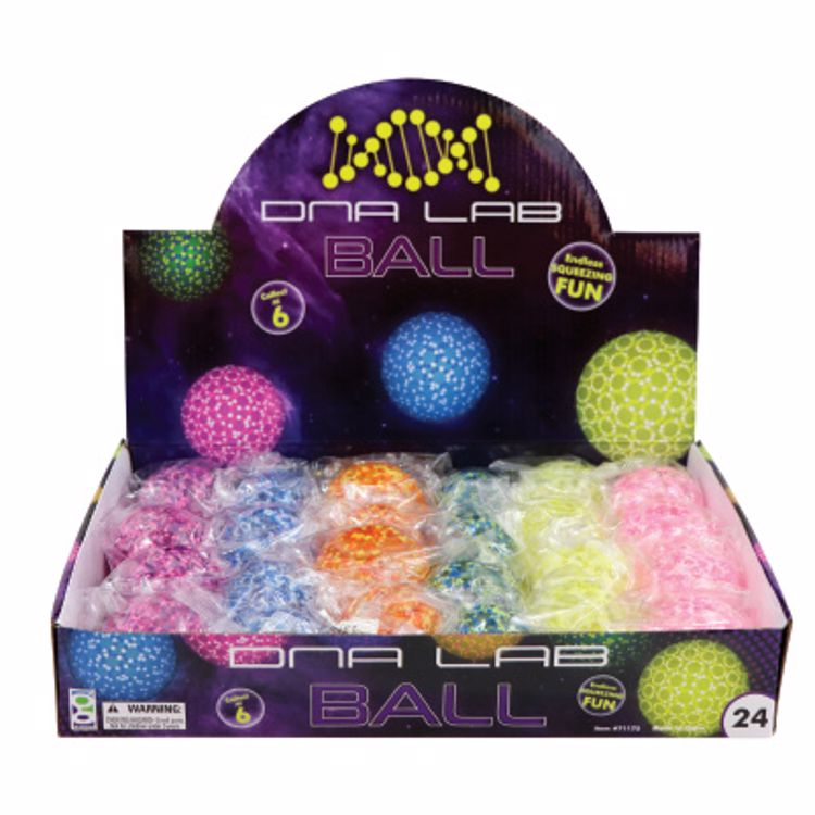 Picture of DNA Lab Slow Rise Ball