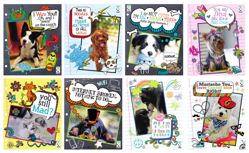 Picture of Scribbles Pets Folders